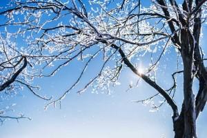blog_snow_affects_solar_panels